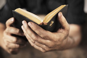 Have a plan to Read the Bible in 2019?